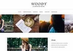 WoodyBlogBlogger Template [ blogspot themes ]